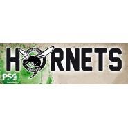 Pulheim Hornets banner