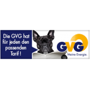 gvg 240x80